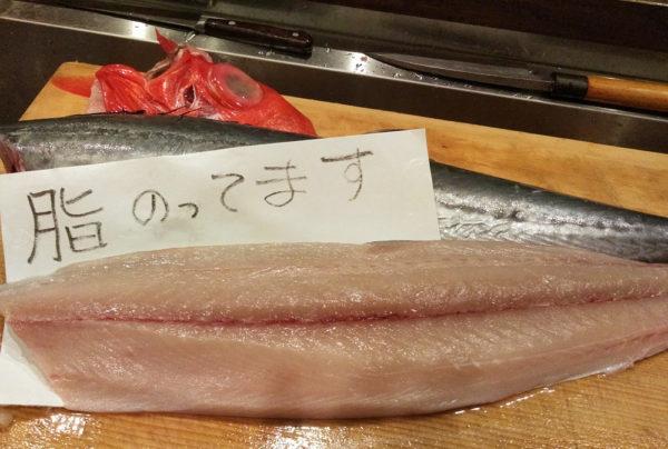 脂がのった魚